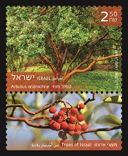 Trees of Israel  Arbutus andrachne Stamps