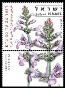 Stamp:Three Loabed Sage (Medicinal Herbs and Spices), designer:Yigal Gabay, Tuvia Kurz 09/2008