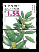 Stamp:Bay Leaves (Medicinal Herbs and Spices), designer:Yigal Gabay  Tuvia Kurtz 11/2007