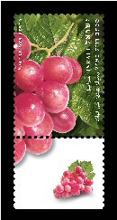 Stamp:Grapes (Fruits of Israel - definitive stamps), designer:Meir Eshel 02/2009