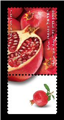 Stamp:Pomegranate (Fruits of Israel - definitive stamps), designer:Meir Eshel 02/2009