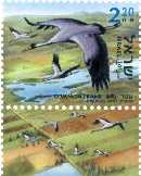 Stamp:Common Crane (Grus Grus) (Birds of the Jordan Valley), designer:Tuvia Kurtz 08/2002