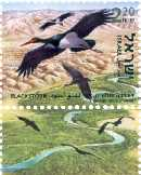 Stamp:Black Stork (Ciconia Nigra) (Birds of the Jordan Valley), designer:Tuvia Kurtz 08/2002