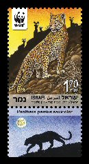 Stamp:Leopard (Endangered Species (World Wildlife Fund) ), designer:Tuvia Kurtz, Ronen Goldberg 02/2011