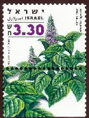 Stamp:Peppermint (Medicinal Herbs and Spices), designer:Tuvia Kurz, Yigal Gabay 12/2006