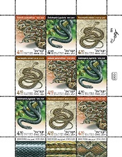 Snakes in Israel Stamp Sheet