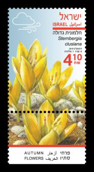 Autumn Flowers - Sternbergia clusiana Stamp Sheet