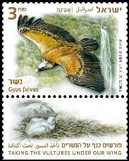 Griffon Vulture Stamp sheet