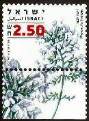 Stamp:Thyme-Leaved savory (Medicinal Herbs and Spices), designer:Tuvia Kurz, Yigal Gabay 12/2006