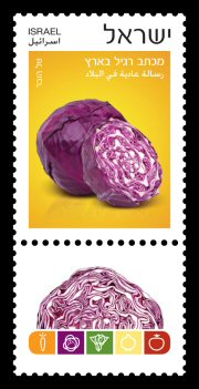Stamp:Purple Cabbage  (Vegetables), designer:Tal Huber 06/2015