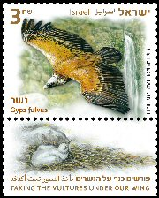 Stamp:Griffon Vulture  (Taking The Vultures under our Wing), designer:Zvika Roitman & Tuvia Kurtz 04/2013