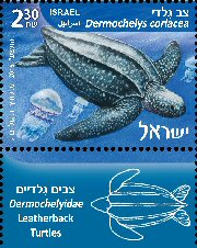 Stamp:Leatherback Turtle (Turtles in the Marine Environment), designer:Tuvia Kurttz, Ronen Goldberg 02/2016